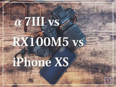 SONY α7III・RX100M5・iPhone XSのカメラ比較レビュー!秋の公園で撮影してきたよ